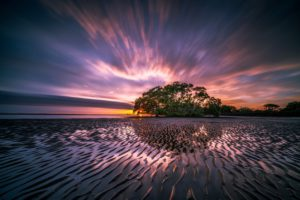 landscape-emandar