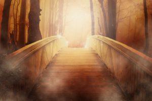 bridge-emandar