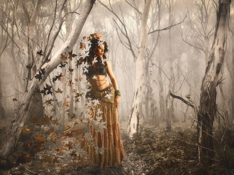 forest-of-dreams emandar