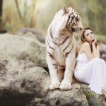 tygrys i kobieta